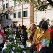 mercato erbe campagnole
