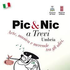picnic a trevi1